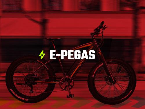 Biciclete Electrice e-Pegas