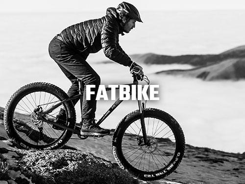 Biciclete Pegas Fatbike