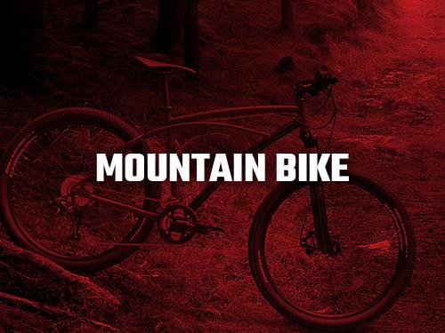 Biciclete Pegas MTB